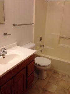 Radisson Bathroom